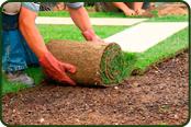 colocación de tepe de cesped natural Viveros Coronado en Madrid
