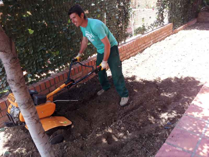 Limpiando de piedras y malas hierbas