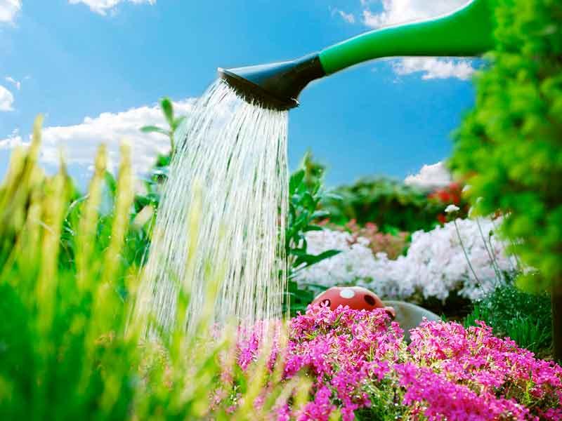 riego de jardines instalacion riego por goteo viveros