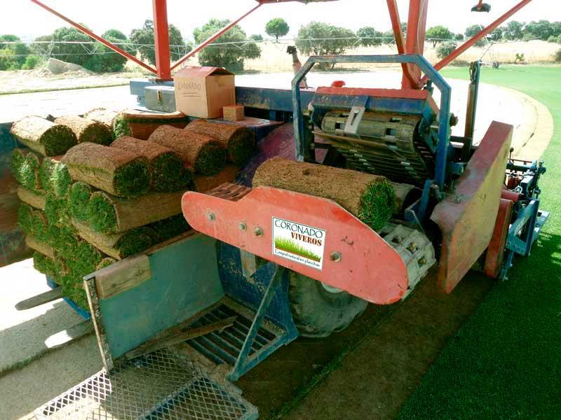 Enrollamiento de las planchas de tepe