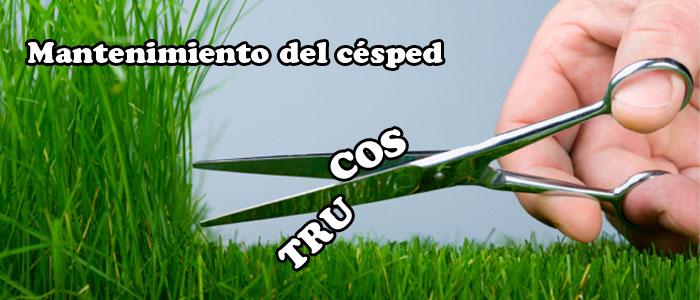 Trucos de mantenimiento de césped natural para jardines. Viveros Coronado en Navalcarnero