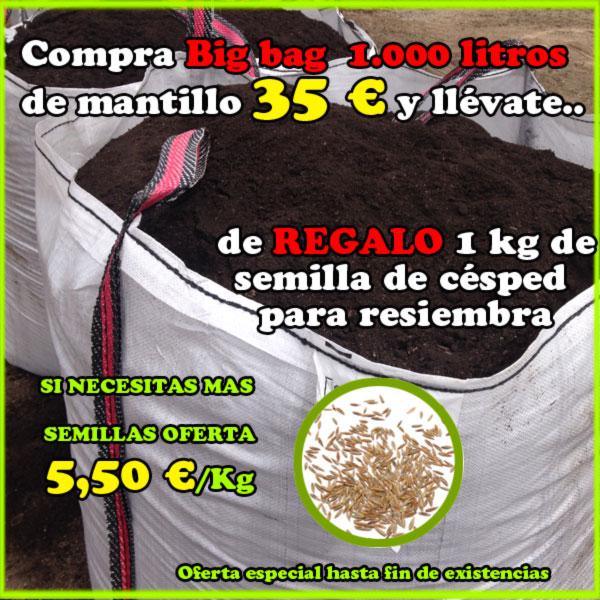 Oferta mantillo regalo 1 kg de semillas de césped de resiembra y oferta precio extra. Viveros Coronado en Navalcarnero (Madrid)