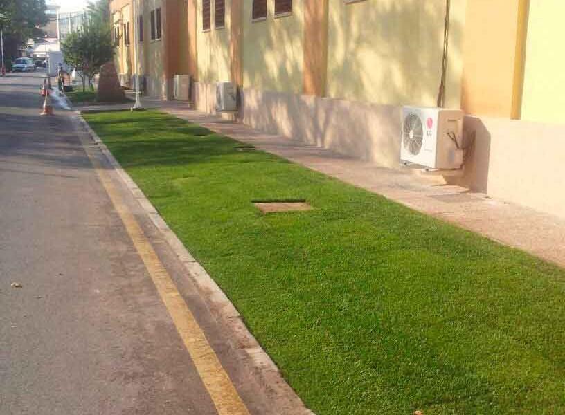 Instalacion de tepe de cesped natural. Viveros Coronado en Navalcarnero Madrid