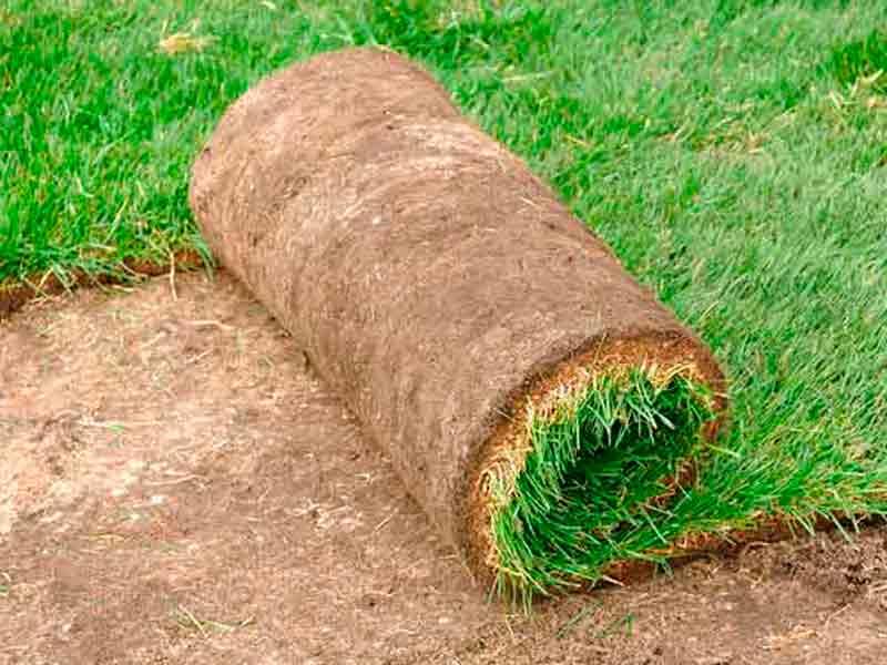 Te instalamos el mejor tepe en tu jardín