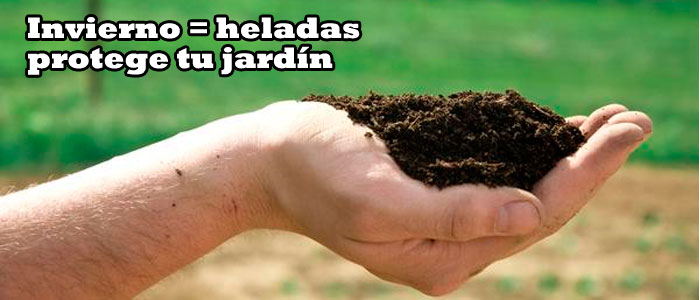 Mantillo para jardines durante el invierno. Viveros Coronado en Navalcarnero, Madrid