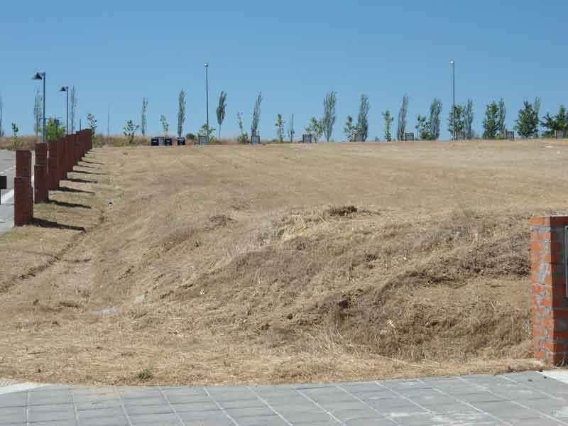Desbroces de terrenos y de parcelas