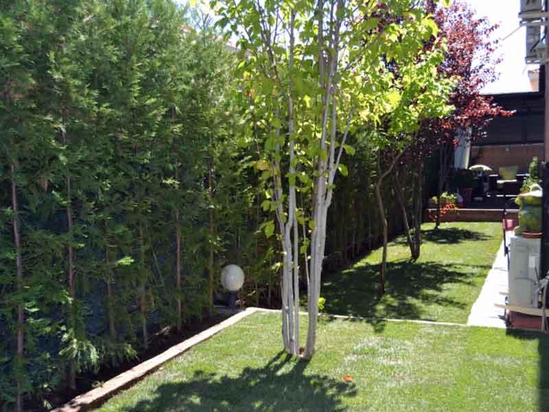 Decoración de jardines con cesped natural y setos